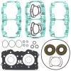 Complete gasket set with oil seal PWC 611210