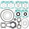 Complete gasket set with oil seal PWC 611209