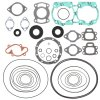 Complete gasket set with oil seal WINDEROSA PWC 611200