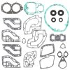 Complete gasket set with oil seal WINDEROSA PWC 611114