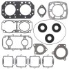 Complete gasket set with oil seal WINDEROSA PWC 611402